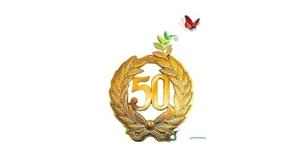 Ander beroep 50+ vereist lef   NVO2 Nieuwsflits 16.04.2013   Scoop.it