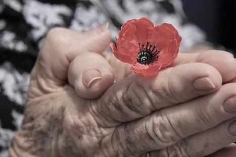 What is Remembrance Day? | Technology | Scoop.it