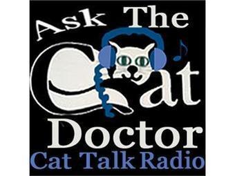 Ask The Cat Doctor about Feline Blindness | Ask The Cat Doctor | Scoop.it