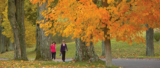 Six Ayurvedic Tips for Staying Healthy This Fall