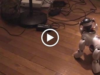 New Generation Robotics - La robotique de nouvelle génération | Une nouvelle civilisation de Robots | Scoop.it