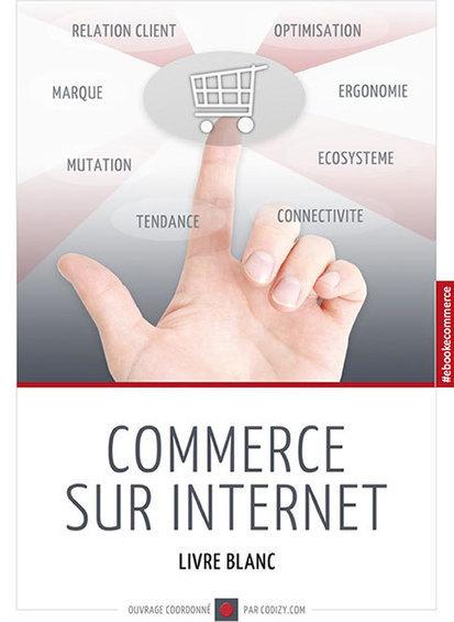 Livre blanc : Commerce sur Internet | Webmarketing Reseaux Sociaux Community Manager SEO et E-Réputation | Suivez nous en live sur Twitter @agenceindigo | Scoop.it
