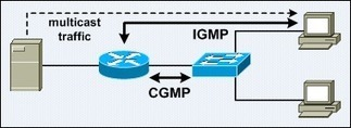 IGMP Snooping and Cisco Group Management Protocol (CGMP) | Cisco Learning | Scoop.it