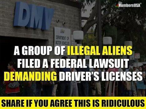 "Keyword ""Illegal"" | Criminal Justice in America | Scoop.it"
