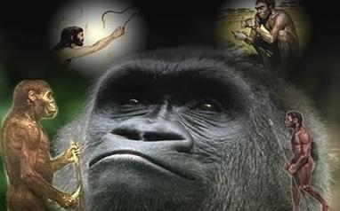 Teorías evolutivas actuales - Ojo Cientifico   la evolución de los organismos   Scoop.it