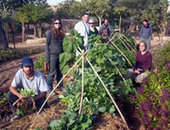 What is the Green Apprenticeship? | The Pantheon of Heroes of Jewish Education | Scoop.it