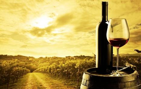 Bordeaux Investment Wines, Investment Wine, Fine Wine Investment, Invest in Wine | Bordeaux Investment Wines | Scoop.it
