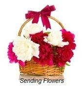 Flowers Delivery | Real Estate | Scoop.it