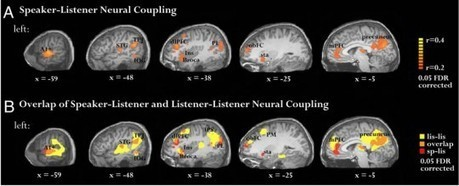 Stories Synchronize Brains | Coaching & Neuroscience | Scoop.it