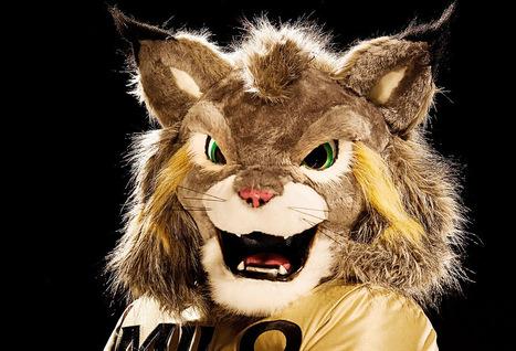 CU Denver shows off new mascot | KDVR.com - KDVR - - (Denver) | New At Alinco | Scoop.it