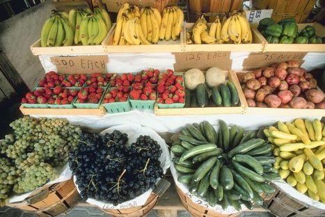 Food Studies Institute   School Gardening Resources   Scoop.it