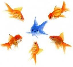 Las Redes Sociales y los RR.HH: Reclutamiento y Employer Branding   EmployerMarketing   Scoop.it