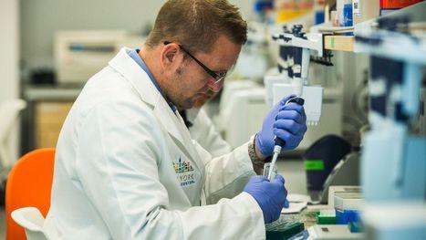 Cancer: une analyse immédiate pour faciliter la vie des patients - RTBF Societe   Actualité santé   Scoop.it
