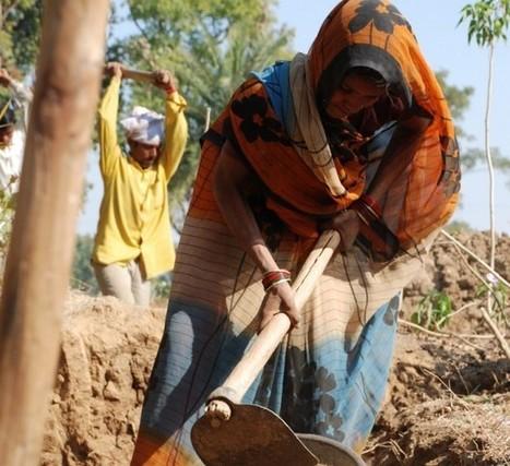 L'agriculture au féminin : une question de reconnaissance | Oxfam ... | Agricultrices | Scoop.it