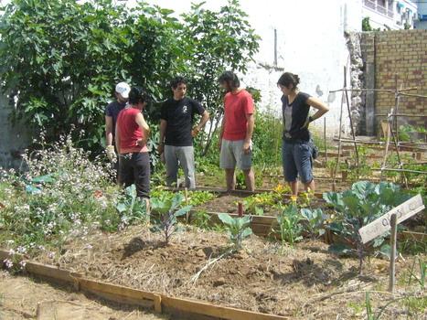 Agricoltura urbana e paesaggio - Comune-info | e-PAISATGE  e-LANDSCAPE  e-PAISAJE | Scoop.it