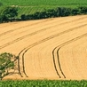Agriculture et agroalimentaire
