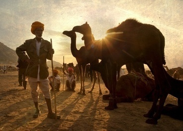 Rajasthan Holiday Packages with special monuments | Rajasthan Holiday Packages | Scoop.it