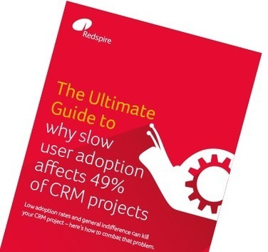 The Ultimate Guide to: Why Slow User Adoption Affects 49% of CRM Projects | Designing  service | Scoop.it
