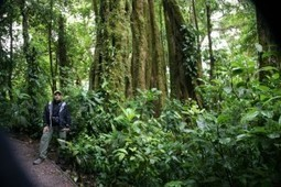 Abounding Natural Beauty of Arenal Volcano and Arenal Lake Area | costaricalearn | Scoop.it