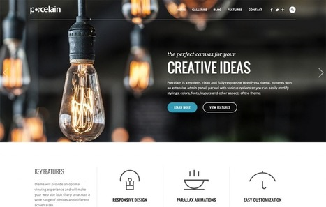 The Most CreAtive Professional WordPress Themes of October 2013 | Design | Scoop.it