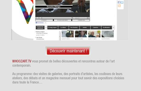 L'art contemporain a enfin sa webtv   Des usages et plus   Scoop.it