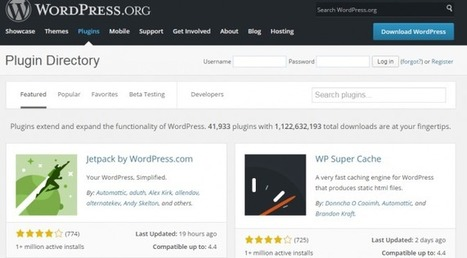 Capitalize on Search Plug-ins for Your WordPress Site | Digital Marketing | Scoop.it