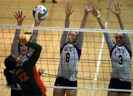 College volleyball: 'Cats get balanced effort in defense of home court | Volley-Ball | Scoop.it