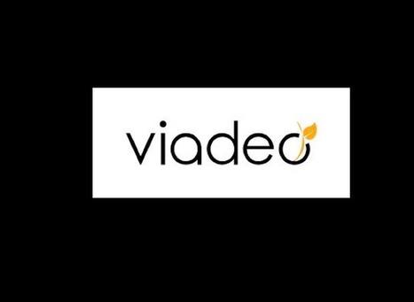 Viadeo s'allie aux CCI et renforce sa stratégie régionale et territoriale | Social Media l'Information | Scoop.it