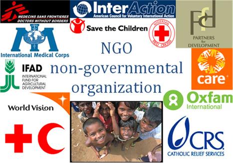 BRNGO CONSULTANCY (brngoconsultant) | NGO Registration | Scoop.it