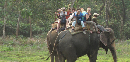 Koshitappu safari | Trekking in nepal | Scoop.it