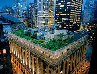 New York Plantings: Greenroofing all over New York | environnement | Scoop.it