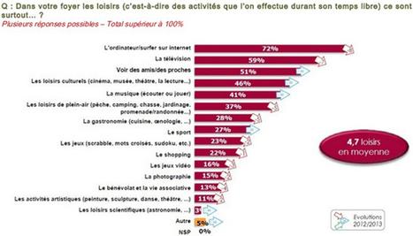 Internet, premier loisir pour 72% des Français en 2013 selon le baromètre Sofinscope | Technologies & Usages | Scoop.it