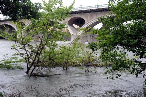 La pollution des eaux préoccupe l'agence Adour-Garonne | Toulouse La Ville Rose | Scoop.it