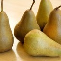 Pear (Pyruss spp.) Genome Completely Sequenced | Plant Genomics | Scoop.it