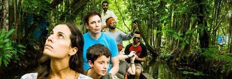 Kerala Tour Packages | Holiday Packages | Kerala Tourism | Kerala Backwater India | Scoop.it