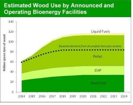 Wood Bioenergy Update | Timberland Investment | Scoop.it