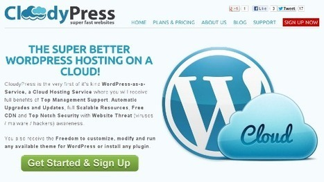 Is Managed WordPress Hosting The Best Solution For Your Website? - noupe | photo-graffiti | Scoop.it