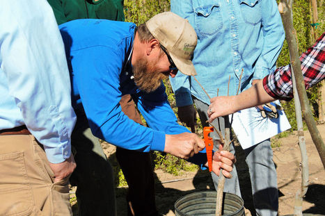 Farm, Home and Ranch Day spreads its wings | CALS in the News | Scoop.it
