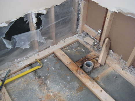 Five Ways to Keep Your Home Mold-Free | Mold Removal | Scoop.it