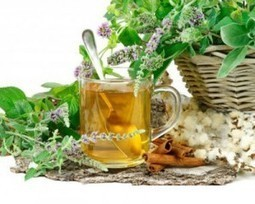 Ayurveda Therapy and Treatments For Skin Care | mytravelshanti | Delhi Ayurveda Packages | Scoop.it
