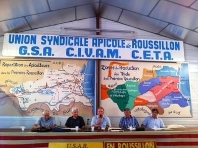 France Bleu | Les abeilles meurent bien intoxiquées dans les Pyrénées-Orientales | Abeilles, intoxications et informations | Scoop.it