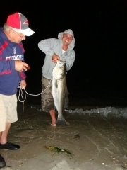 The Quick Start Guide To Surf Fishing On Any Beach eBook | I love boating | Scoop.it