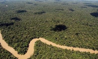Ecuador signs permits for oil drilling in Amazon's Yasuni national park | Rainforest EXPLORER:  News & Notes | Scoop.it