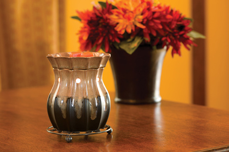Wicks Scentsy Candles and Warmers are great accessory for your home decor. | Scentsy Candles Online | Scoop.it