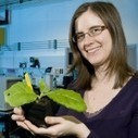 SpotOn London 2012: Anne Osterrieder's secret life   Plant Biology Teaching Resources (Higher Education)   Scoop.it