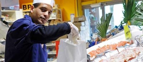Voyage au pays de la sécurité des aliments | SECURITE ALIMENTAIRE | Scoop.it