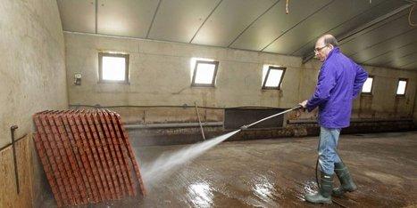Grippe aviaire : l'exemple d'une exploitation de Dordogne qui applique le vide sanitaire | Agriculture en Dordogne | Scoop.it