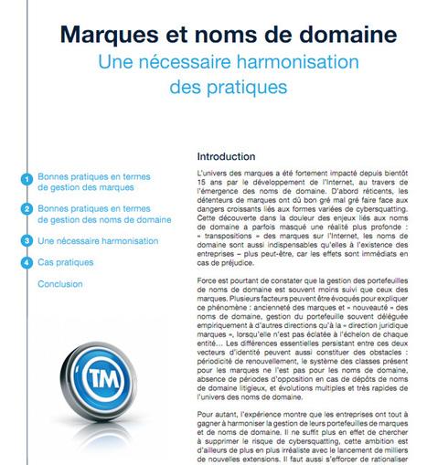Marques et noms de domaine: L'AFNIC publie un dossier thématique   Time to Learn   Scoop.it