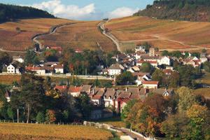 Bientôt deux Grands Crus à Pommard ?   vin   Scoop.it