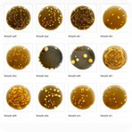 Belly Button Biodiversity | Microbial World | Scoop.it